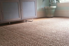 carpet and rug 4